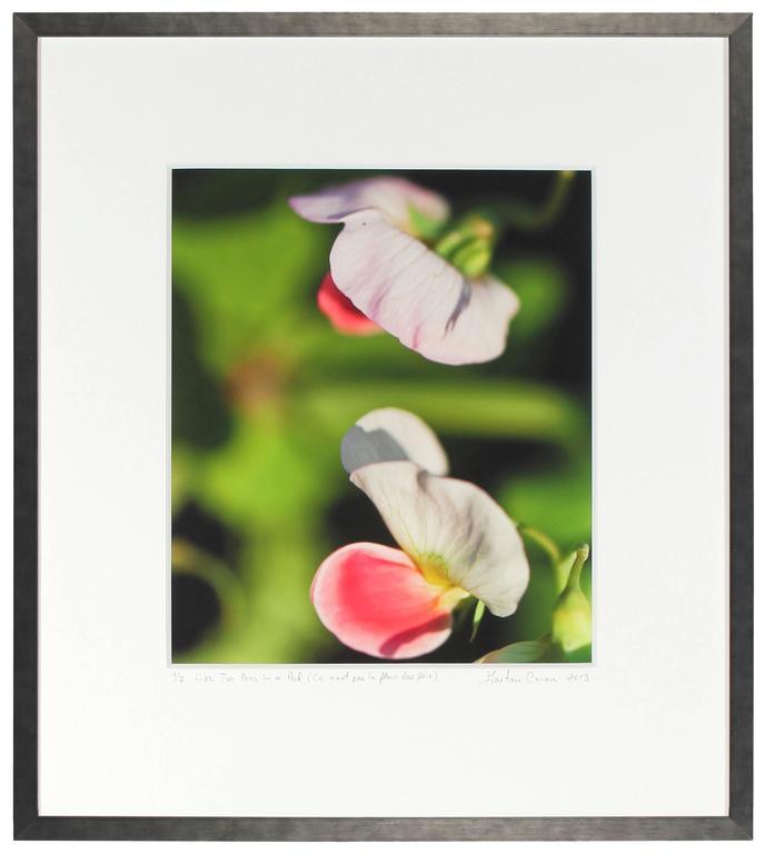 """""""Like Two Peas in a Pod (Ce n'est pas la fleur des pois)"""", Mendocino California - Contemporary Photograph by Gaétan Caron"""