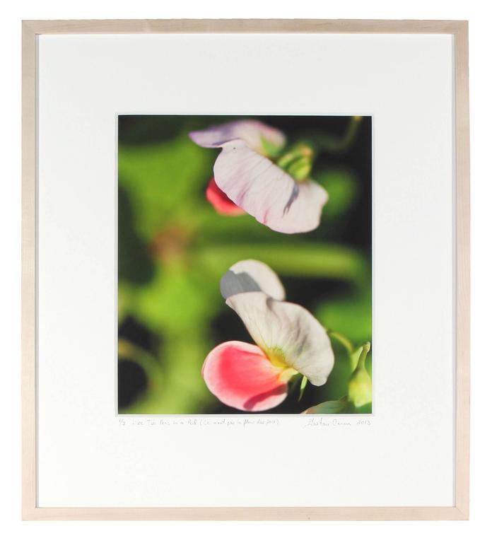 """Like Two Peas in a Pod (Ce n'est pas la fleur des pois)"", Mendocino California - Green Still-Life Photograph by Gaétan Caron"