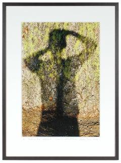 """Ponderosa Pine, Self-Portrait"", Mendocino, CA Photograph, 2016"