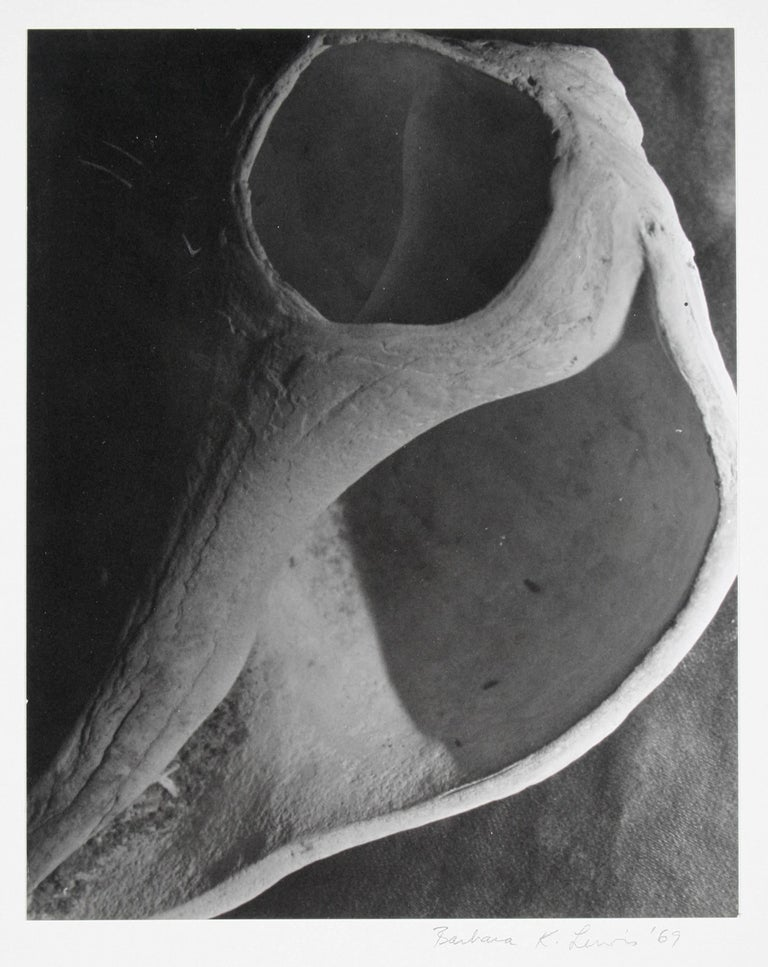 Study of a Bone, Framed Black and White Photograph, 1969