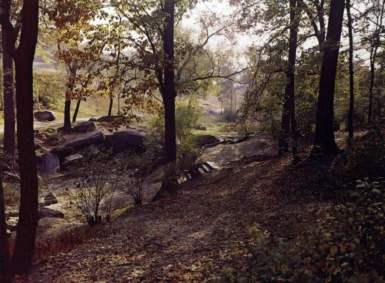 Evelyn Hofer Landscape Photograph - Central Park, New York