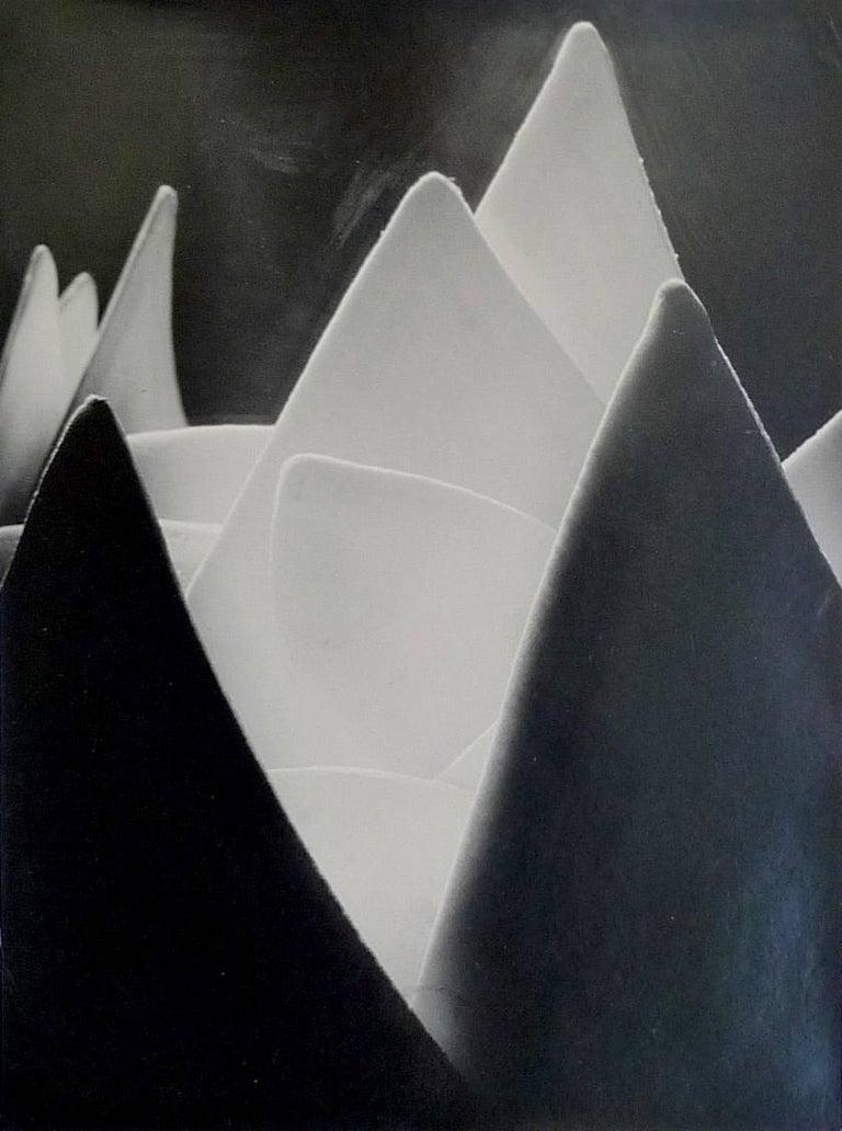 Eugen Wiskovsky - Lunar Landscape (shirt collars) 1
