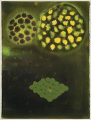 Ross Bleckner - Untitled, 1989