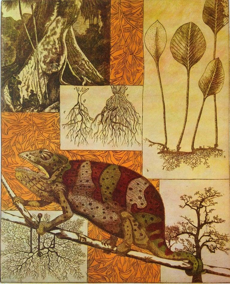 Anne-Marie Petri Animal Print - Interior of a Rizoloog