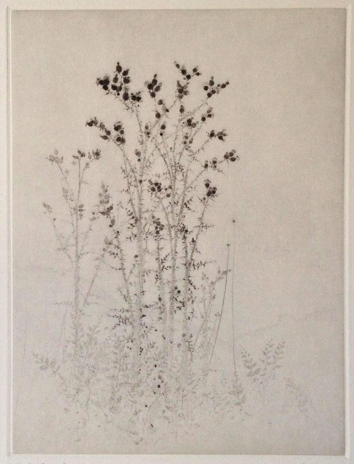 Jean Michel Mathieux-Marie - Le Coupole, Print For Sale at 1stdibs