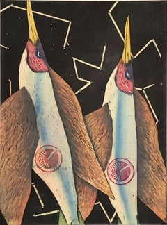 Birds, or Space Shuttle