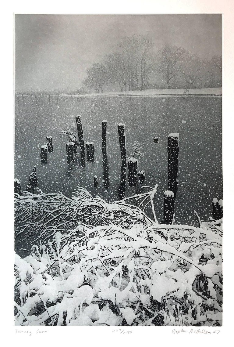 Stephen McMillan Landscape Print - January Snow