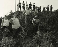 Fans in the Weeds