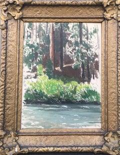 Redwoods, McCloud River, California