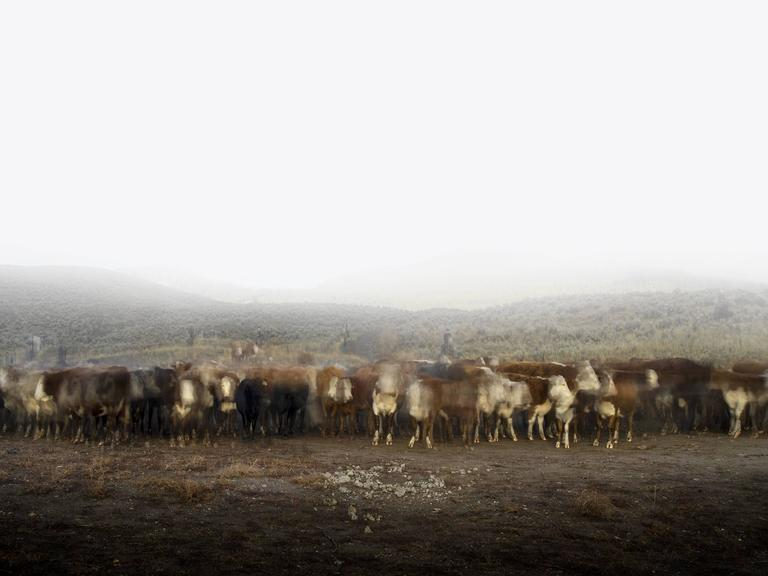 Kevin Boyle -  Cattle Call and Seven Cowboys 1