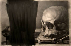 Untitled Still Life with Skull