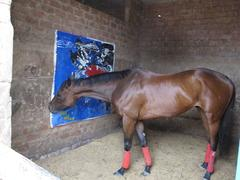 Karma (paintings for race horses) suite