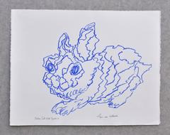 Lapin Blue Du Hollande