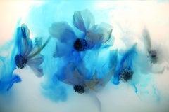 Synesthesia - UT-396HZ (Blue)