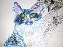 Chat Bleu Avec Greque Ancien