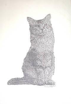 RIC: Random Internet Cat #6