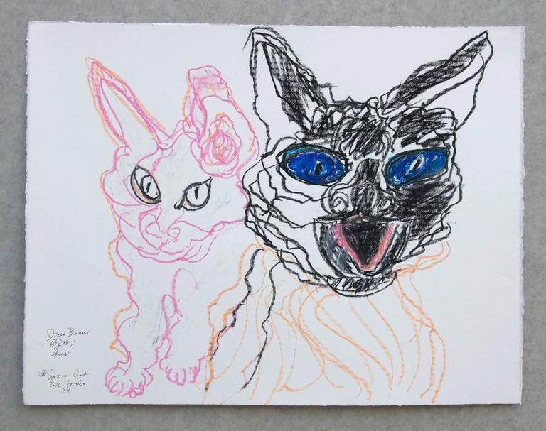 Lapin Blue Du Hollande - Gray Animal Art by Simone Gad