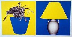 Plant and Lamp (B+Y; Y+B)