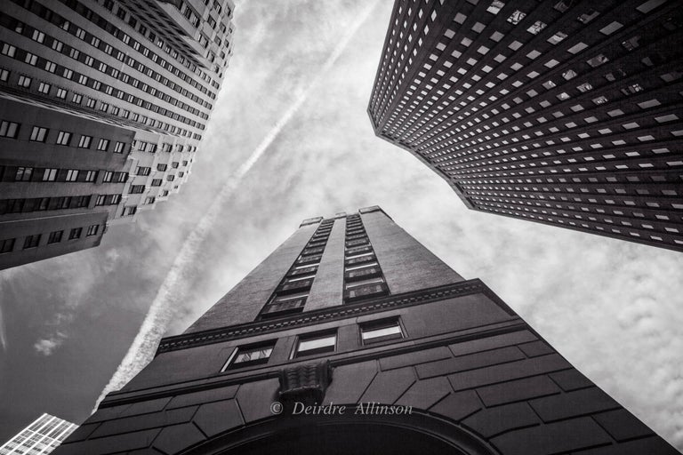 Deirdre Allinson Black and White Photograph - Reaching to the Sky
