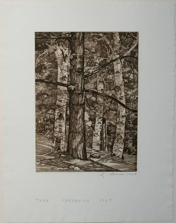 Luigi Lucioni Tree Portraits Print For Sale At 1stdibs