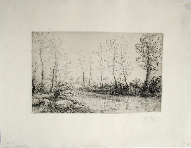 Le bouleaux: bord de l'eau, effect du matin. - Print by Alphonse Legros