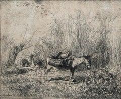 L'âne au pré (Donkey in the Field)