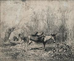 L'âne au pré (Donkey in the Field)