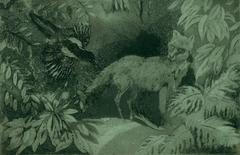 THe Fox and the Magpie