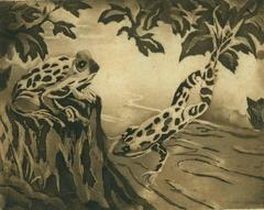 Isabel Beatrice Mesham - Two Frogs