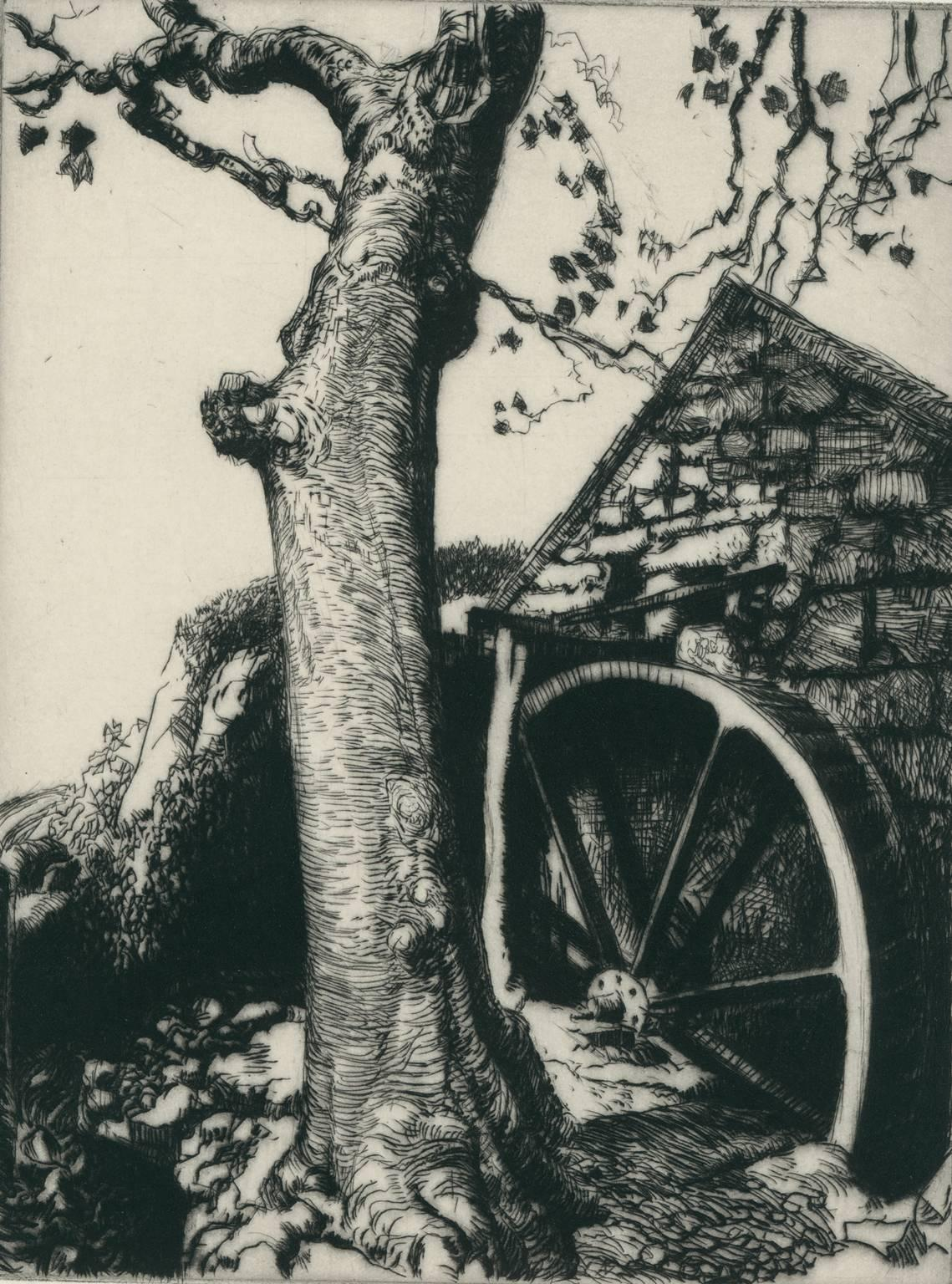 Mill Wheel with Sycamore.