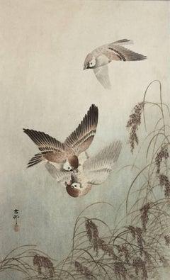 Ohara Koson - Sparrows Over Grass