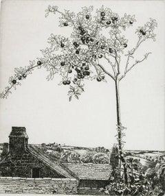 Apple Tree (Fruit Tree Overlooking Farm)