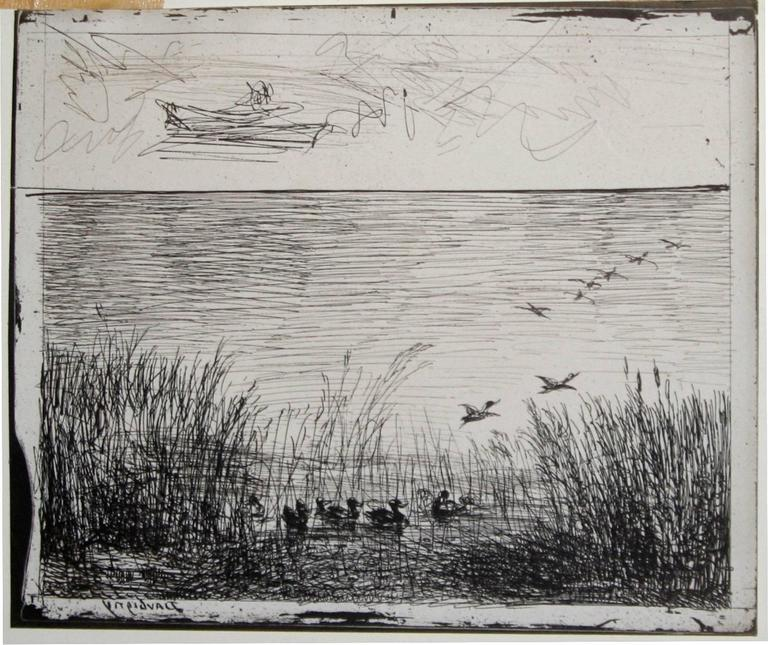 Le marais aux canards (Marsh with Ducks). - Photograph by Charles François Daubigny