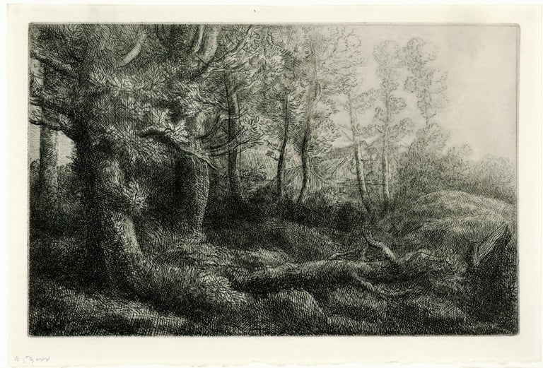 La Lisière de Fôret. (The Edge of the Forest).  - Print by Alphonse Legros