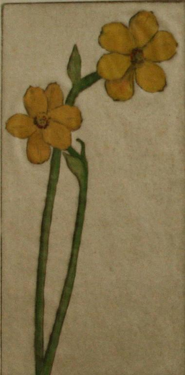 Narcissus. - American Modern Print by Bertha Evelyn Clausen Jaques