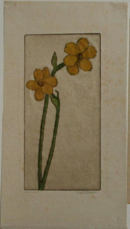 Narcissus. - Print by Bertha Evelyn Clausen Jaques
