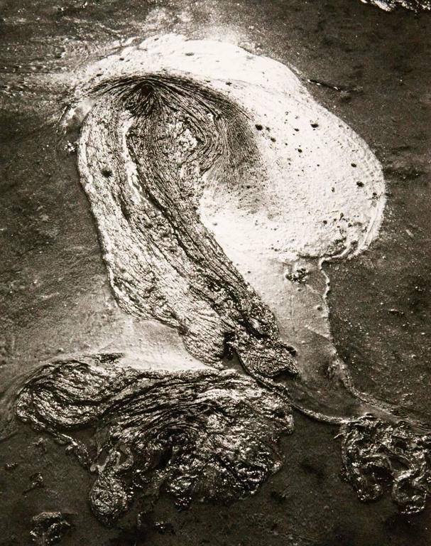 Lucien Clergue Untitled From The Series 39 Camargue Secr Te 39 At