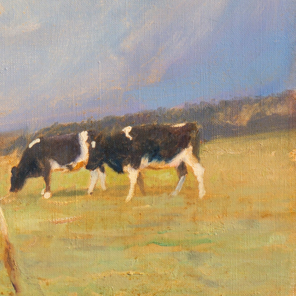 A light-filled, panoramic landscape showing Holstein cattle grazing in a grassy field beneath sun-lit clouds.  Signed lower right, 'G. Bundgaard' for Gunnar Bundgaard (Danish, 1920-2005) and dated '57'.  A listed Danish still-life and animal