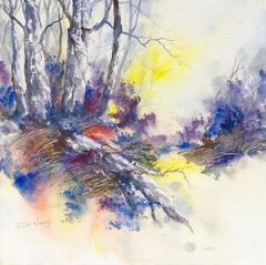 David Wong - Woodland Sunset