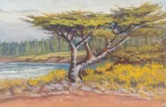 'Lone Cypress, Carmel', California Impressionist, San Francisco de Young Museum