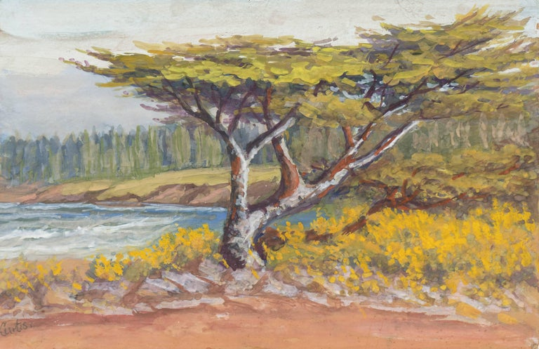 Alice Hunt Curtis Landscape Painting - 'Lone Cypress, Carmel', California Impressionist, San Francisco de Young Museum