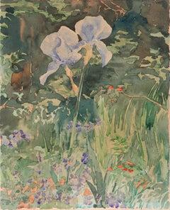 'Iris in a Garden', London Royal Academy, Canada