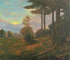 'Sunset Landscape'