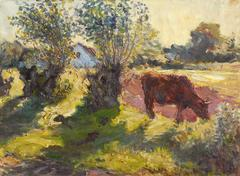 Sunset Landscape with Cow Grazing