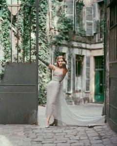 Courtyard Dior Gray Chiffon