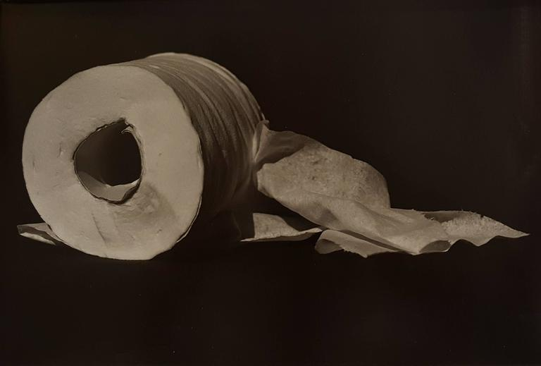 On a Roll - Photograph by Naomi Savage