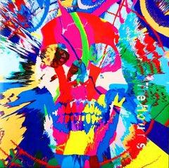 Rare Original Damien Hirst vinyl record art (Damien Hirst skull art)