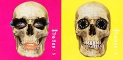 Damien Hirst - Damien Hirst Record Skull Art