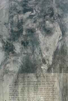 Raphael Leonardo