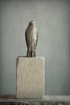 Pescadero Bird